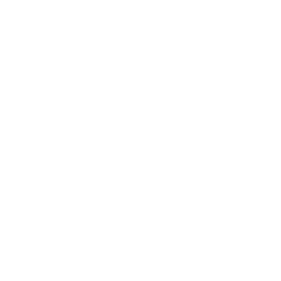 btn-icon